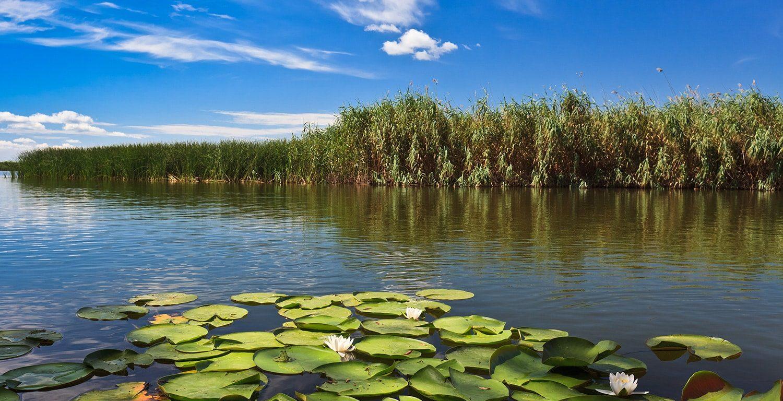 Remote_water_canals_Danube_Delta