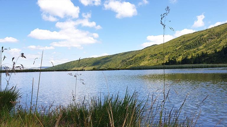 Taul Stiol lake in Rodnei Mountains, Maramures