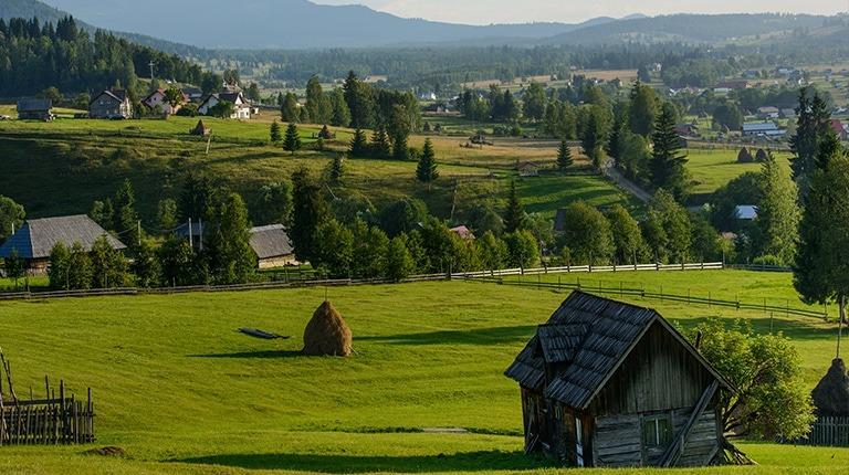 Rural landscape in Bucovina