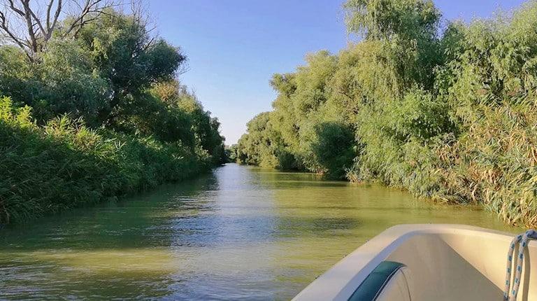 Boat transfer in Danube Delta