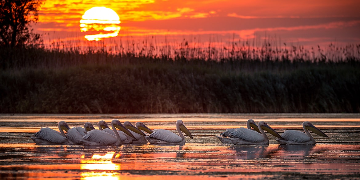 Spectacular sunset on Danube Delta Romania On The Map